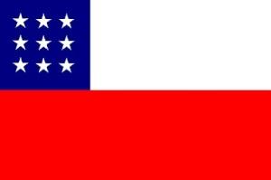 Bandera Propuesta