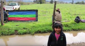 partido mapuche